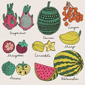 Bright tropical fruit set in vector. Dragon fruit, durian, longan, mangosteen, carambola, mango, ann