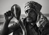 foto of cobra  - Snake Charmer With Cobra in Sri Lanka - JPG
