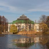 pic of sankt-peterburg  - Autumn landscape in Taurian park of Sankt - JPG