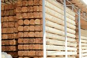 Warehousing cylindrical logs