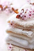 Cotton Bath Mitts