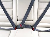 Fasten Seat Belts In The Car For   Safety