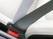 stock photo of seatbelt  - fasten seat belts in the car for your safety