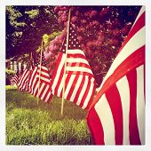 stock photo of veterans  - instagram style row of us flags for memorial day - JPG