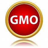 No Gmo Sign Icon