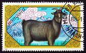 Postage Stamp Mongolia 1989 Goat, Farm Animal
