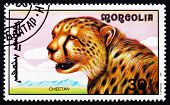 Postage Stamp Mongolia 1991 Cheetah, African Animal