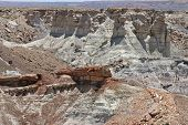 Petrified Forest National Park In The Arizona Desert