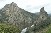 Rock With A Colony Of Vultures. The Massif Of The River Flowing At The Foot