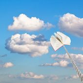 Book Tied On Rope Soars Into Little White Clouds