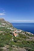 Madeira island's (Portugal) beautiful green south coast