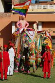 Decorated elephant and mahout