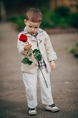 small boy with red rose