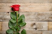 Red Rose On Old Wooden Background
