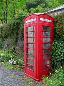British Phone Boxin The Greenery