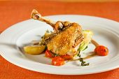 stock photo of fowl  - Fried pearl chicken guinea fowl on red lentils with vegetables and port wine sauce decorated with very thin grilled crispy potatoe stripes - JPG