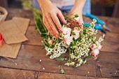 Hand of florist touching tender rosebuds