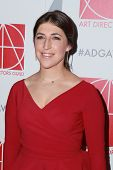 LOS ANGELES - JAN 31:  Mayim Bialik at the 19th Annual Art Directors Guild Excellence in Production Design Awards at a Beverly Hilton Hotel on January 31, 2015 in Beverly Hills, CA
