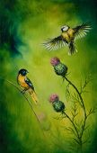 picture of songbird  - A beautiful oil painting on canvas of a pair of songbirds flattering above a distel flower on an emerald green background - JPG