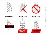 picture of wheat-free  - Vector Wheat Free Signs isolated on white background - JPG