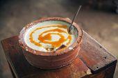 Curd Yoghurt