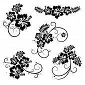 Collection of hibiscus flourish decorative design elements