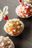 pic of cake pop  - cake pops - JPG