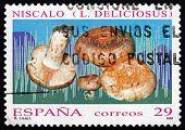 Postage Stamp Spain 1994 Saffron Milk Cap, Mushroom