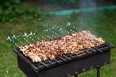 image of barbecue grill  - Grilling shashlik on barbecue grill with delicious meat - JPG