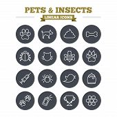 picture of clutch  - Pets and Insects linear icons set - JPG