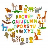 picture of animal x-ray  - alphabet for kids from A to Z - JPG