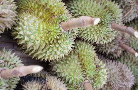 picture of south east asia  - Thai Durian - JPG