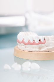 image of false teeth  - Dental mold of a set of false teeth with dental tools on a wooden table arranged so that the mirror reflects the teeth in a dentistry and healthcare concept