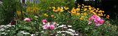 Perennial Garden Panorama