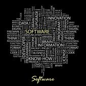 SOFTWARE. Illustration with different association terms in black background.