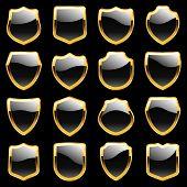 Vector shields. Set of heraldic symbols