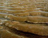 Sand Ribs