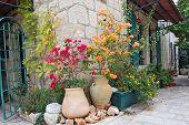 Flowerbed on medieval street of Jerusalem