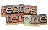 Testosterone Word In Letterpress