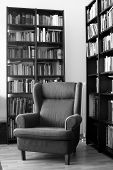 Armchair In The Library
