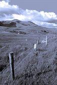 Beautiful Lush Fields Of Ireland