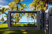 Video camera or camcorder recording tropical palm trees and beach.