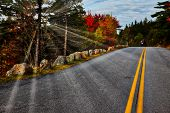 Sunrays with autumn colors in Acadia NP poster