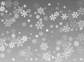 Snow Flakes Falling Macro Vector Illustration, Christmas Snowflakes Confetti Falling Chaotic Scatter poster