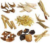 Herbal medicine : Assortment of Dried Chinese herbs isolated on white background (White peony root,