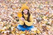 Amazing Leaf. Happy Girl Hold Maple Leaf. Small Girl Smile Sitting On Fall Leaves. Little Child Girl poster