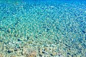 Azure Clear Sea Water. Background Of Transparent Blue Sea Water Top View. Crystal Clear Water, Throu poster