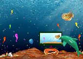 Landscape:  Sea Inhabitants Watch Monitor