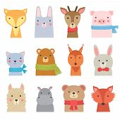 Funny Animals. Cute Zoo Collection Shower Kids Decoration Baby Animals Vector Hand Drawn Pictures. Z poster