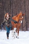 Girl With Dog And A Horse Outdoors